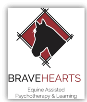 Bravehearts Equine Assisted Psychotherapy Learning